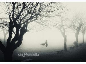 compagni-nella-nebbia