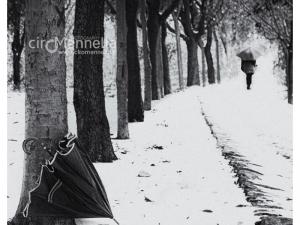 ombrello-abbandonato